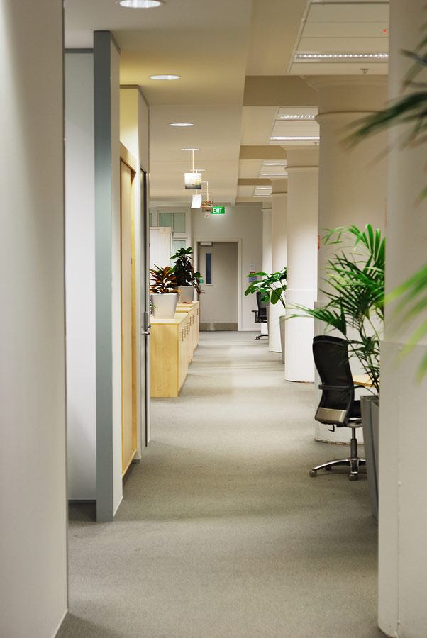 office hallway carpet